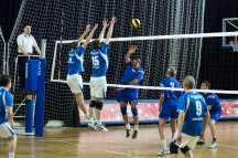 volleyball-arena-8881.jpg