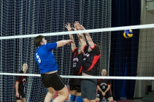 volleyball-arena-8763.jpg